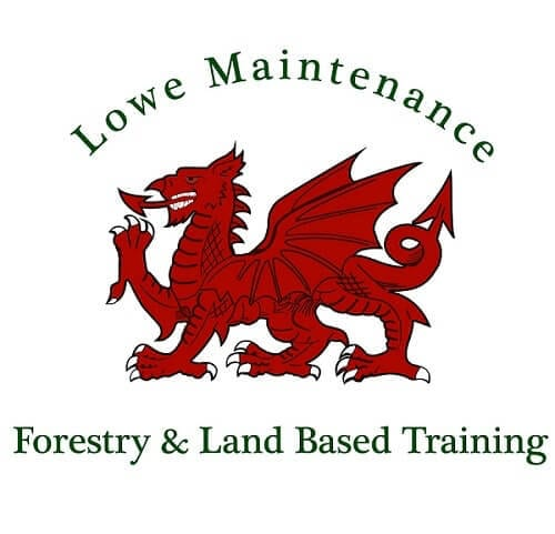 Lowe Maintenance