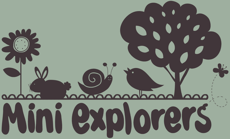 Mini Explorers Nursery