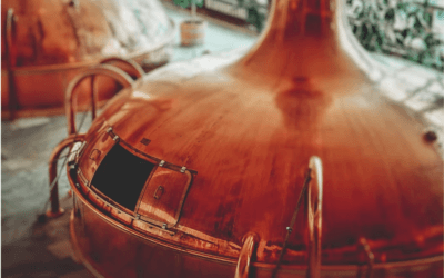 Appetite Me: Setting Up Your Own Gin Business