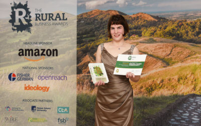 Birchill Access Consultancy – Best Rural Professional Business