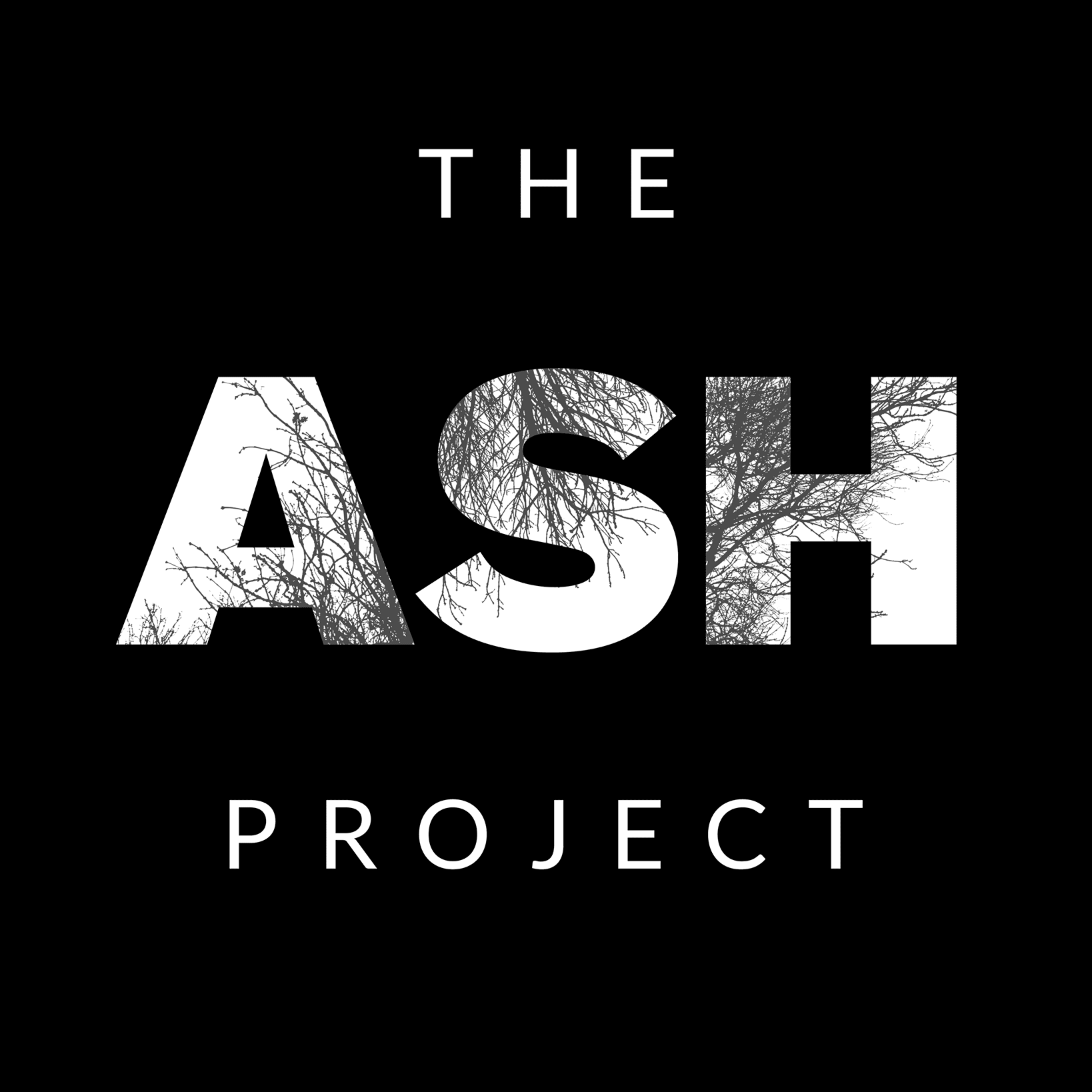 The Ash Project