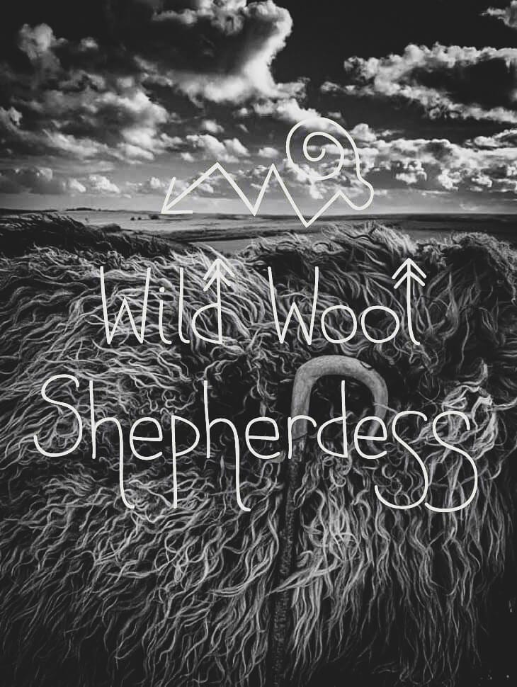 Wild Wool Shepherdess