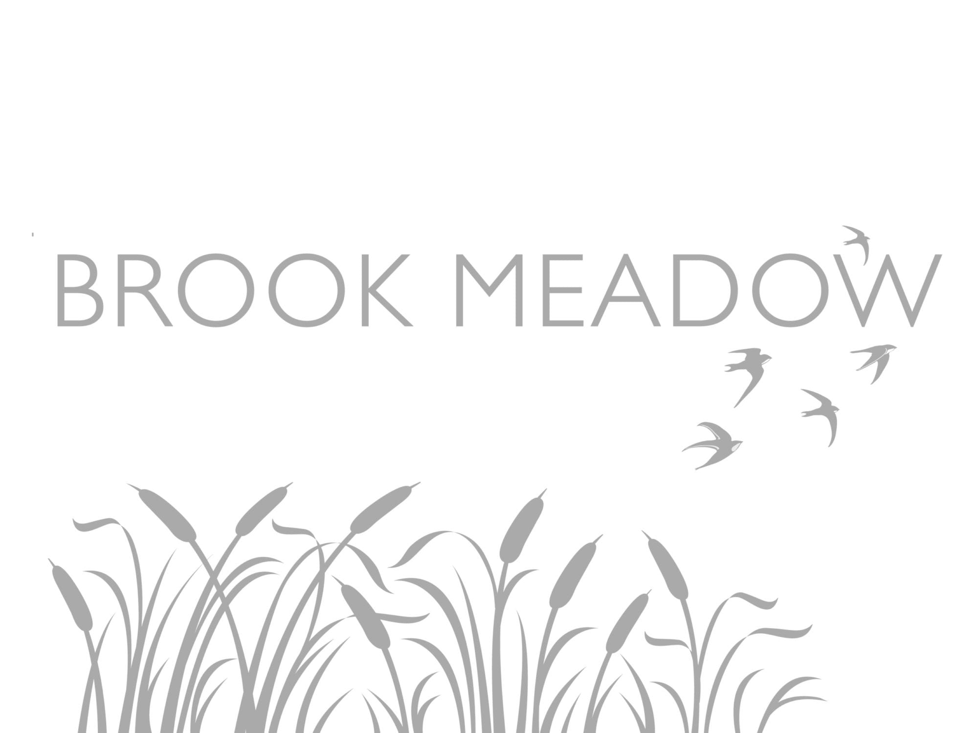 Brook Meadow