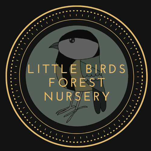 Little Birds Forest Nurseries Ltd